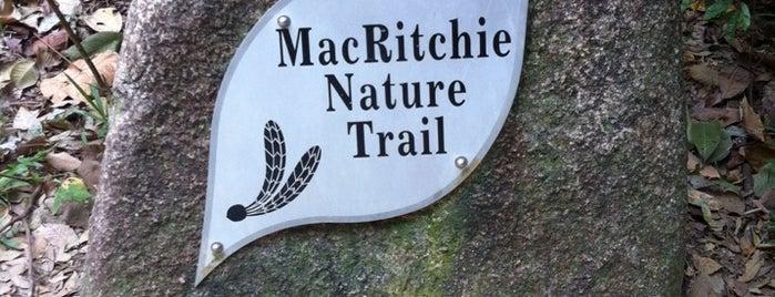 MacRitchie Nature Trail is one of Singapura.