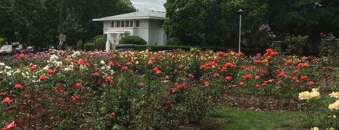 West Ladd Rose Garden is one of myrrh : понравившиеся места.