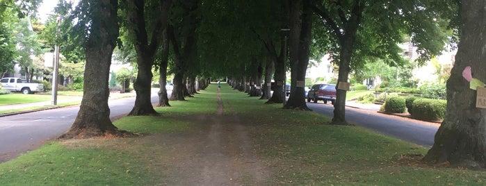 Eastmoreland Neighborhood is one of Portland, OR.