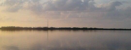 Ft. DeSoto Kayak Rental is one of Florida.