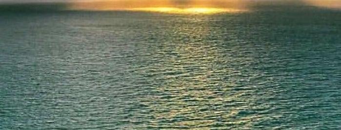 Miami Beach is one of Miami.
