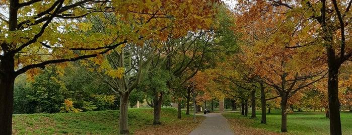 Central Park is one of Posti che sono piaciuti a Carl.
