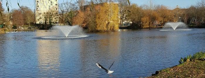 Central Park is one of Lugares favoritos de Carl.