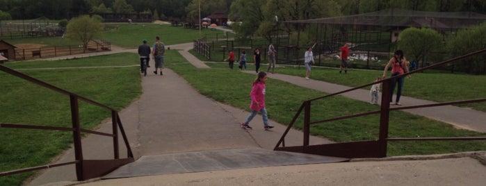 Парк птиц «Воробьи» is one of Olga : понравившиеся места.