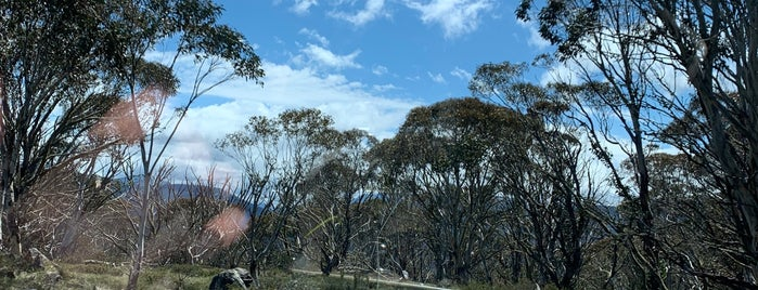 Mount Hotham is one of Tourism.