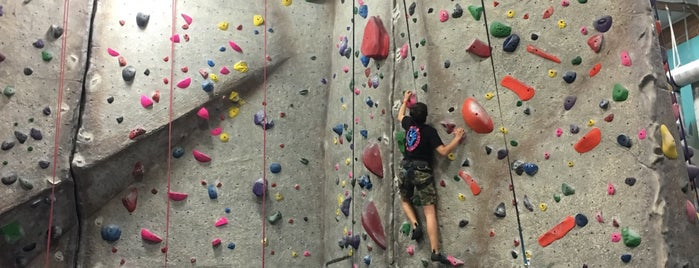 Rockreation Sport Climbing Center is one of W. Side I (Santa M., Brentwood, Venice, MDR, PDR).