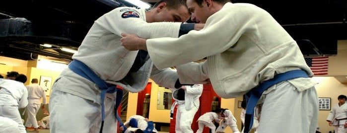 New York Jiu Jitsu is one of To Try.