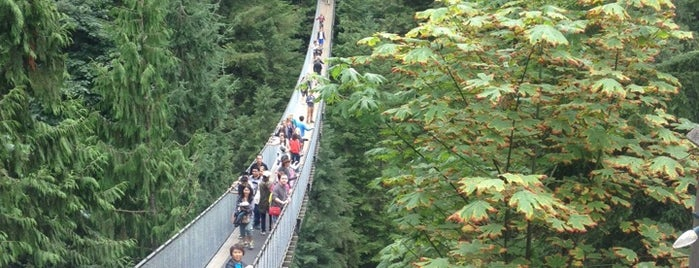 Capilano Suspension Bridge is one of Far Far Away.
