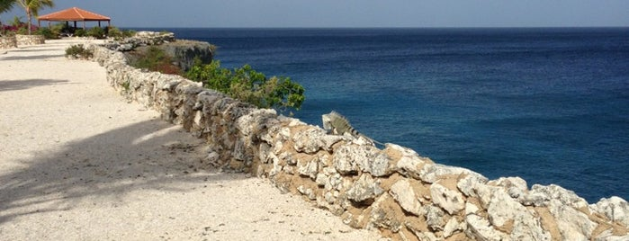 Marazul Dive Resort is one of Tempat yang Disukai Delete.
