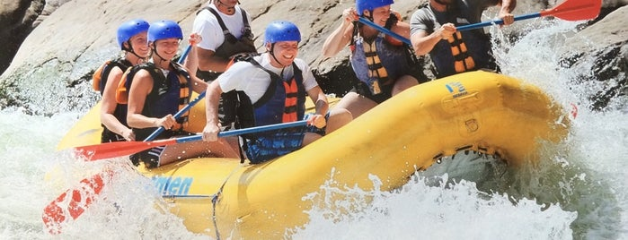 Adventures On The Gorge is one of New River Gorge.