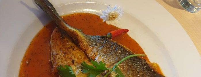 L'Orient Restaurant Libanais is one of Locais curtidos por Jana.