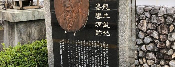 河田小龍生誕地 墨雲洞跡 is one of 西郷どんゆかりのスポット.