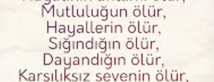 Kızılcaören is one of Kütahya | Merkez Köyler.