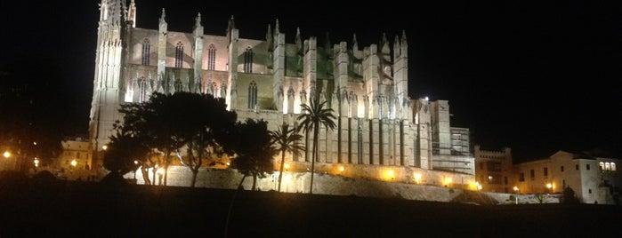 Palma is one of Mallorca.