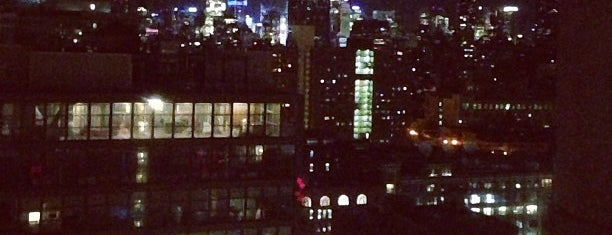 Top of The Standard is one of NYC Nightlife.