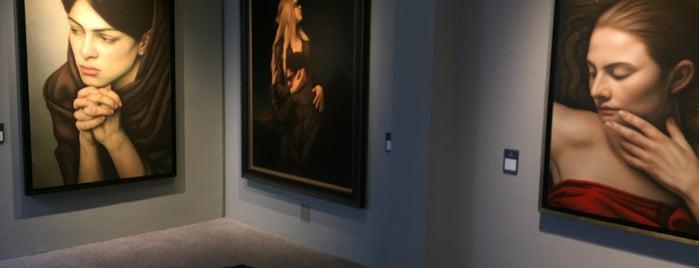 Museo Fundación Santiago Carbonell is one of Museo y Colección.