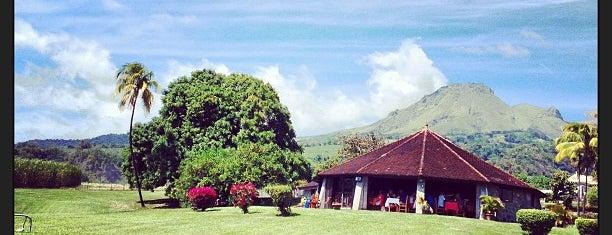 Distillerie Depaz is one of Martinique.