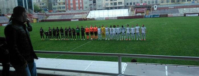 Kartal Stadyumu is one of İstanbul Stadyum ve Futbol Sahaları.