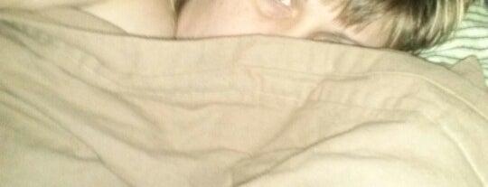 warm comfy bed is one of David : понравившиеся места.