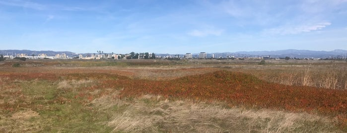 Ballona Wetlands is one of LA Outings.