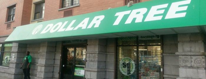 Dollar Tree is one of Gespeicherte Orte von Tatiana.