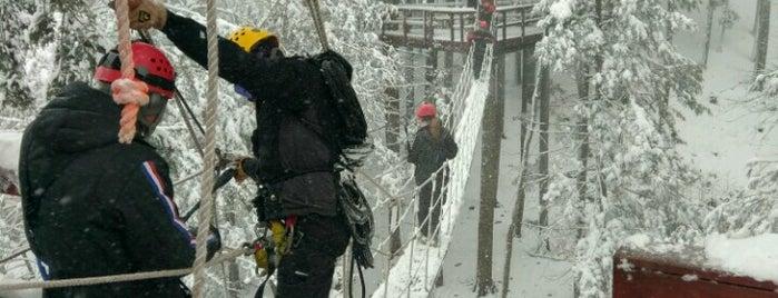 Zipline Adventure Tours is one of Catskills.