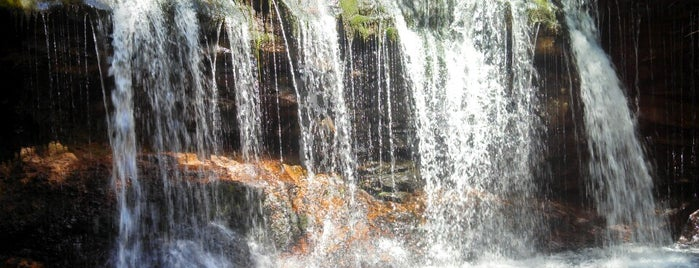 Ricketts Glen State Park is one of NYC-Toronto Road Trip.