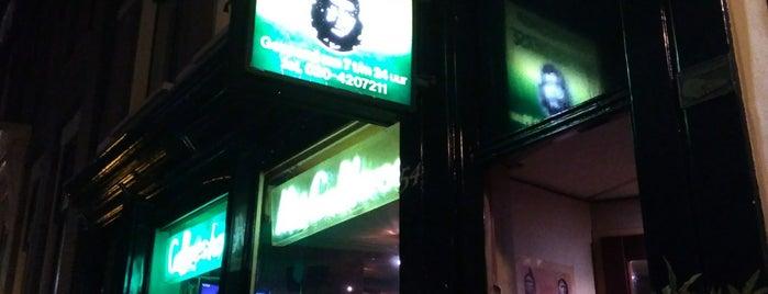 Het Gelderse is one of Amsterdam Coffeeshops 1 of 2.