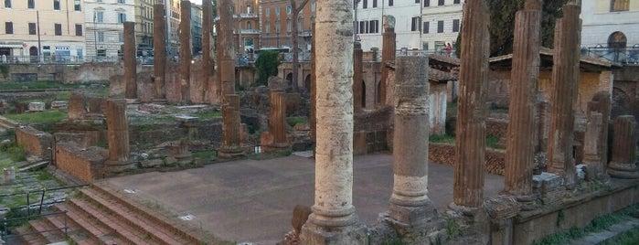 Площадь Торре Арджентина is one of 101 cose da fare a Roma almeno 1 volta nella vita.
