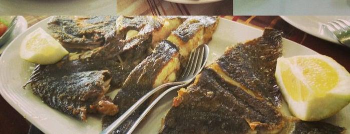 Restaurante A Illa is one of To do's Sanxenxo.
