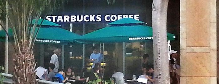 Starbucks is one of Lieux qui ont plu à Serpil.