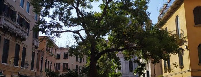Campo Santa Maria Nova is one of Venedik.