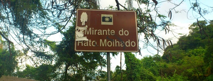 Mirante do Rato Molhado is one of Rômulo : понравившиеся места.