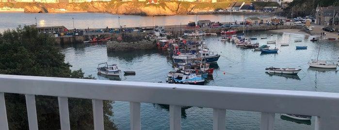 The Harbour Fish & Grill is one of Orte, die Sema gefallen.