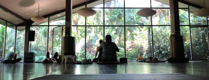 The Yoga Barn is one of путешествия.