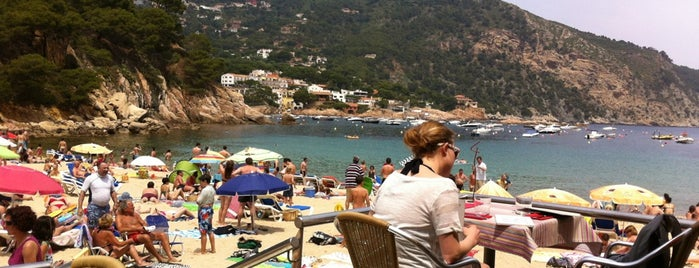 Toc Al Mar is one of Terrazeo en la costa catalana.