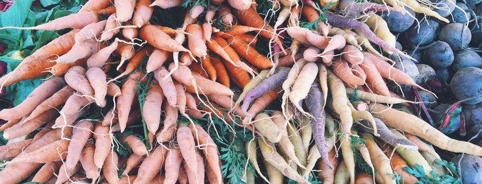 Greenport Farmers Market is one of Posti che sono piaciuti a Celestine.