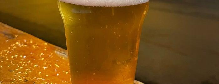 Wilk Craft Beer & Grub is one of San Jose.
