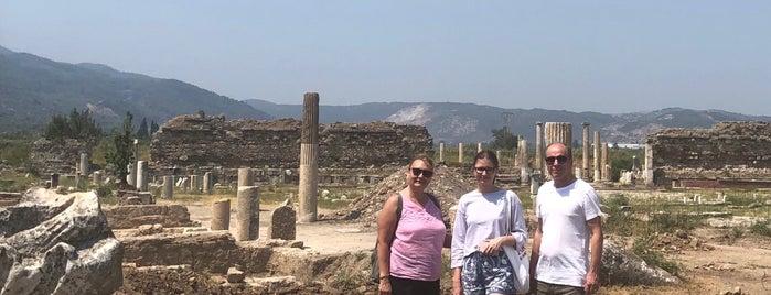 Magnesia Artemis Tapınağı is one of Aydın.