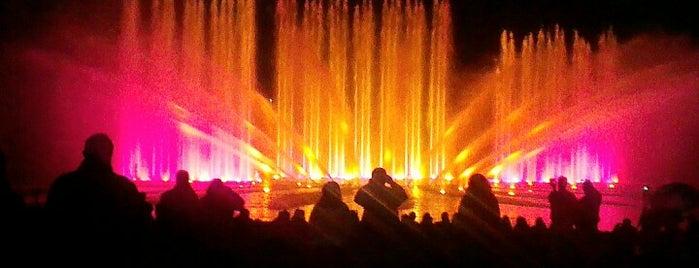 Wasser-Licht-Konzert is one of Hamburg.