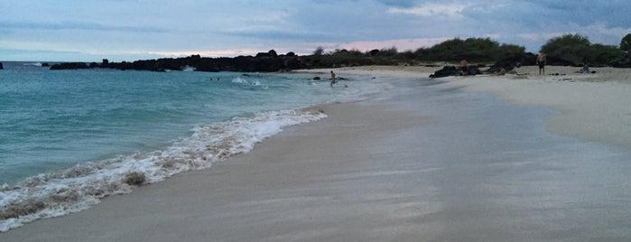 Mauna Kea Beach is one of Hawaii.