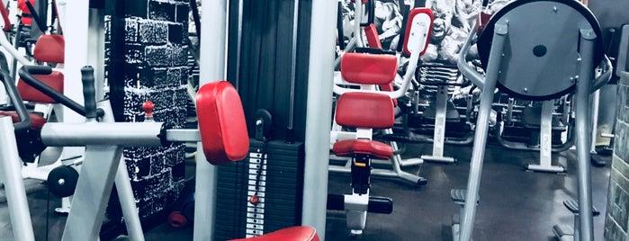 Dallah Gym is one of Posti che sono piaciuti a Hamad.