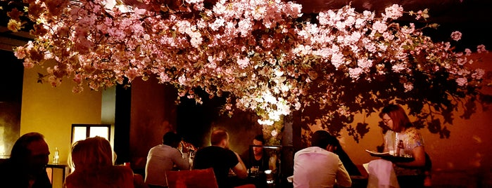 Shochu Lounge is one of Fitzrovia, London.