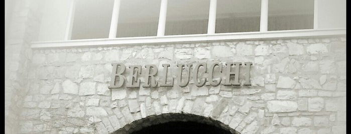 Berlucchi Fratelli  Azienda Agricola is one of Cantine BS.