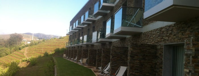 Delfim Douro Hotel is one of PORTUGAL.