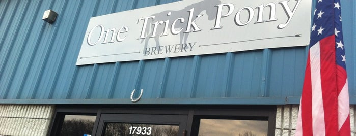 One Trick Pony is one of Chicago area breweries.