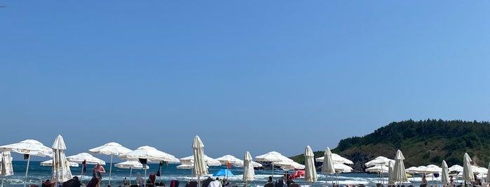 Силистар (Silistar Beach) is one of Posti che sono piaciuti a Jovana.