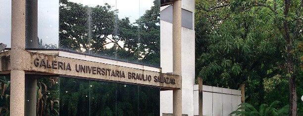 Galería de Arte Braulio Salazar is one of Valencia Town.