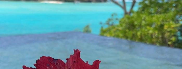 Enchanted Island Resort is one of Seychelles.