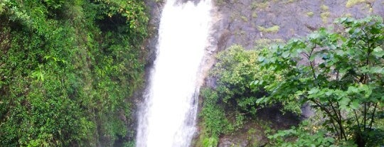 Mae Pan Waterfall is one of Trips / Thailand.